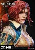 Triss Merigold Of Maribor | The Witcher