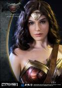 Wonder Woman Dawn Of Justice | DC Comics