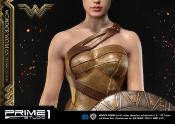 Wonder Woman | Training Costume